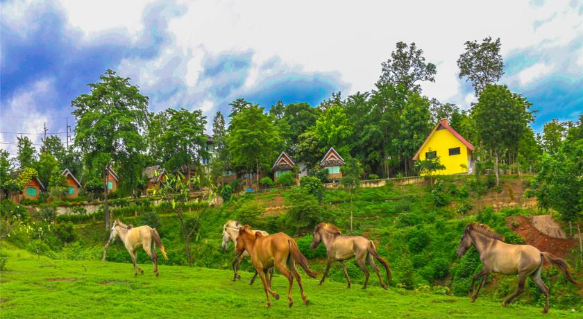 Nord de la Thailande avec des enfants - hôtel - Pai - chevaux - equitation