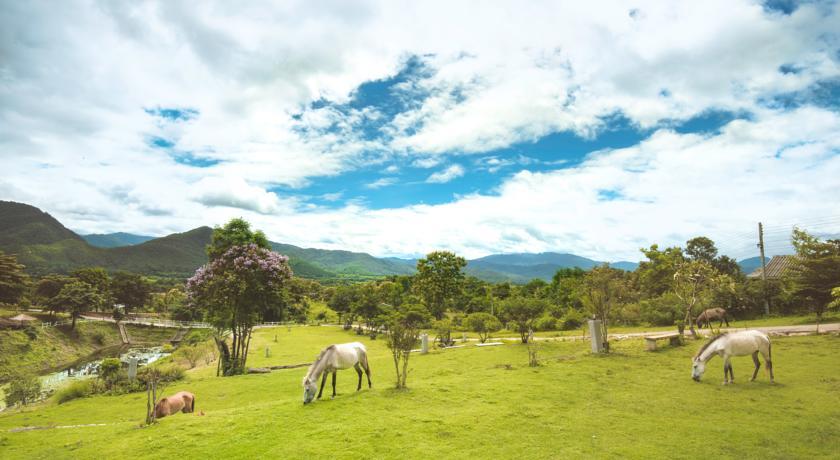 Nord de la Thailande avec des enfants - hôtel - Pai - chevaux - equitation - nature