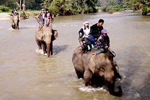 maehongson - elephant - Nord de la Thailande en famille - excursion - visite - trek
