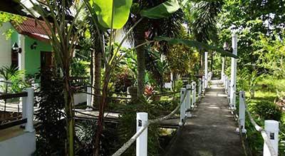 jardin tropical-hotel pas cher ao nang-palmier