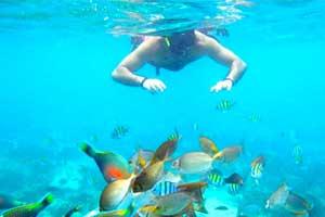 activité sud thaïlande - plongée sous marine ao nang