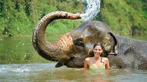 Thailande avec des enfants - voir des elephants - baignade