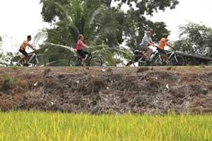 Ayutthaya avec des enfants-partir en thailande avec un ado-campagne-nature-hors des sentiers battus