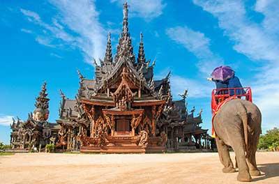 pattaya elephant