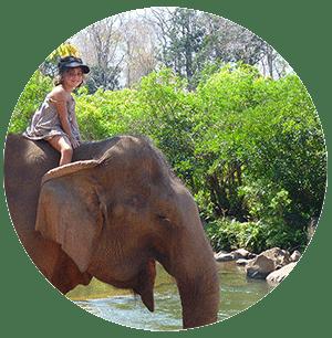 voir des elephants en Thailande- partir en thailande avec des enfants
